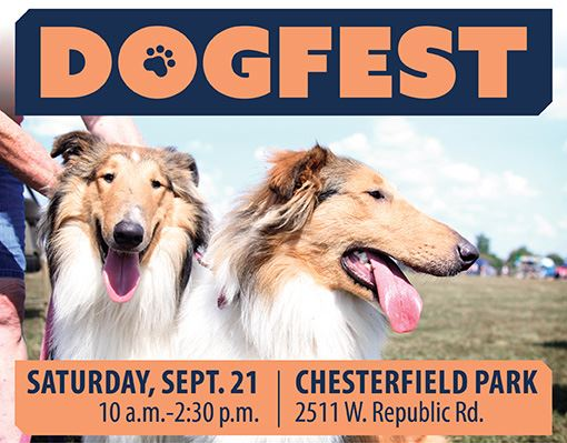 Dog Fest 2019 Web Event Picture