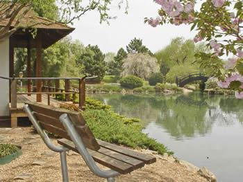 Park Bench Beside Pond