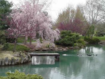 Springfield greene county park board photo gallery Mizumoto japanese stroll garden